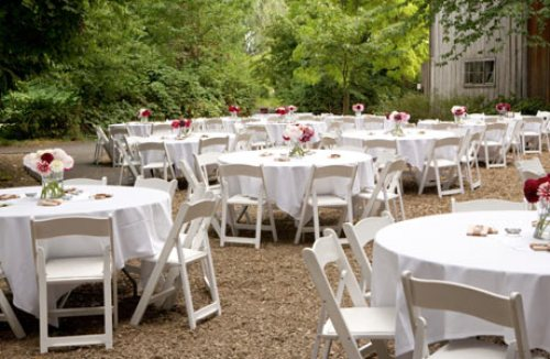 Backyard Wedding Reception  In White
