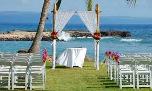 How to Make Wedding Arch with Bamboo