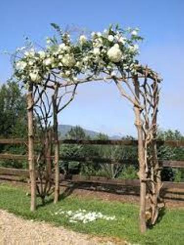 How To Make A Wedding Arch Out Of Wood And Arbor