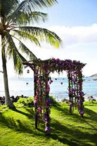 How to Make a Wedding Arch Out of Wood with Flowers