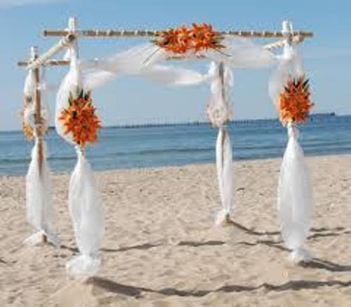 Wedding Arch with Bamboo