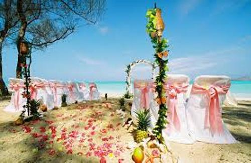 Wedding at the Beach Design