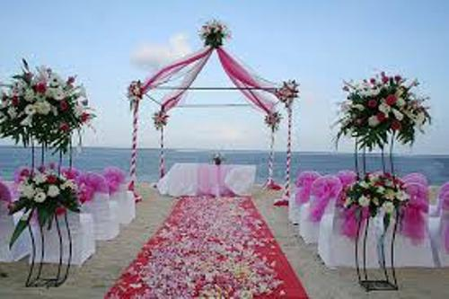 Wedding at the Beach in Pink